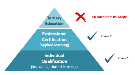 Professional-Certification-Stages-and-Scope-Triangle